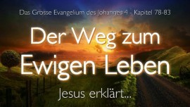 DER WEG ZUM EWIGEN LEBEN Jesus erlaeutert Das Grosse Johannes Evangelium Band 4-Jakob Lorber