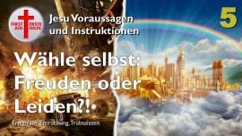 DU WAEHLST FREUDEN IM HIMMEL oder HOELLE AUF ERDEN Entrueckung Ereignisse Truebsalszeit Jesu Voraussagen-Liebesbrief von Jesus