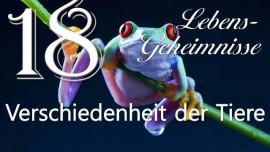 Gott offenbart Lebensgeheimnisse Gottfried Mayerhofer 18-Verschiedenheit der Tiere