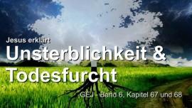 DIE UNSTERBLICHKEIT DER MENSCHENSEELE UND TODESANGST-Das Grosse Johannes Evangelium-Jakob Lorber