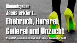 HG-Jesus erklaert-Wer alles treibt Ehebruch Hurerei Geilerei Unzucht-Himmelsgaben Jakob Lorber