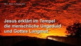 Jakob Lorber-Das Grosse Johannes Evangelium Band 7-Menschliche Ungeduld-Geduld Gottes-Langmut Gottes-Jesus erklaert
