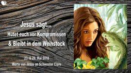 2018-05-23 - Jesus sagt-Keine Kompromisse machen-Im Weinstock bleiben-Liebesbrief von Jesus
