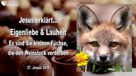 2016-01-27 - Eigenliebe-Lauheit-Gleichgueltigkeit-Kleine Fuechse verderben den Weinberg-Liebesbrief von Jesus
