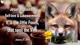2016-01-27 - Self-Love-Lukewarmness-Indifference-Little Foxes spoil the Vine-Love Letter from Jesus