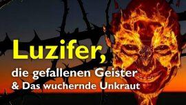 Predigten des Herrn-51-Matthaeus 13_24-30 Unkraut auf dem Acker-Luzifer-Gefallene Geister-