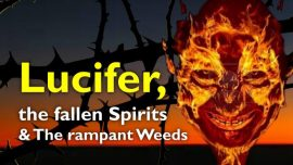 Sermons of the Lord-51-Matthew 13_24-30 Tares in the Field-Lucifer-Fallen Angels-Fallen Spririts-Weed-