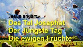 Grosses Johannes Evangelium Jakob Lorber-Auferstehung des Fleisches-Josaphat-Ewige Frucht-Liebesbrief Jesus