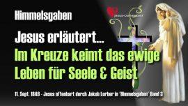 Himmelsgaben Jakob Lorber-ewiges Leben-Kreuz tragen-Leben Seele-Leben Geist-Liebesbrief von Jesus