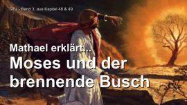 Das Grosse Johannes Evangelium Jakob Lorber-Mose und der brennende Dornbusch