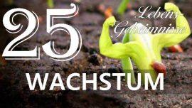 Lebensgeheimnisse Gottfried Mayerhofer-Der Schopfer erklart Wachstum-Geistig und Materiell-Liebesbrief von Jesus