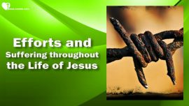 The Third Testament Chapter 12-Jesus Efforts Struggles Suffering Cross-Teaching from Jesus Christ
