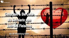 Die Haushaltung Gottes Jakob Lorber deutsch-Gehorsam und Liebe als Befreierin vom Joch des Fleisches