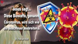 2020-02-25 - Biowaffe Coronavirus-Ausbreitung wie ein Buschfeuer-Jesus ist einzige Hoffnung-Liebesbrief von Jesus