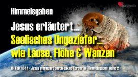 Seelisches Ungeziefer wie Lause Flohe Wanzen-Jesus Christus offenbart Himmelsgaben Jakob Lorber deutsch