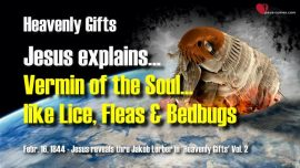 Vermin of the Soul like Lice Fleas Bedbugs-Jesus Christ explains Gifts of Heaven thru Jakob Lorber englisch