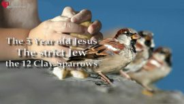 Gospel of James-Childhood Youth of Jesus-Twelve Clay Sparrows-strict Jew-5 year old Jesus Christ