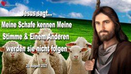 2021-08-26 - Meine Schafe kennen Meine Stimme-Einem Anderen werden sie nicht folgen-Liebesbrief von Jesus Maria